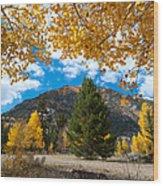 Autumn Scene Framed By Aspen Wood Print