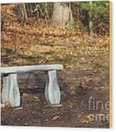 Autumn Seat Wood Print