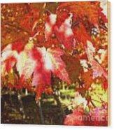 Autumn Shadows Wood Print