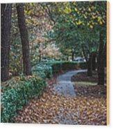 Autumn Side Walk Wood Print
