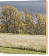 Autumn Skies Canaan Valley Of West Virginia Wood Print