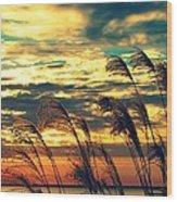 Autumn Skies Over The Ocean Wood Print