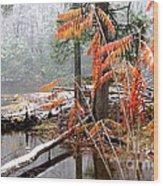 Autumn Snow Cranberry River Wood Print