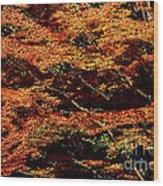 Autumn Solarisation 1 Wood Print