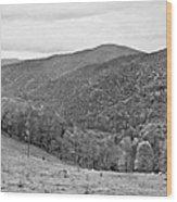 Autumn Song Monochrome Wood Print