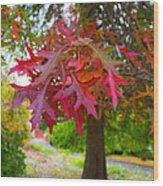 Autumn Splendor Wood Print by Mamie Thornbrue
