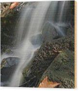 Autumn Stream Wood Print