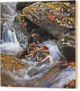 Autumn Stream North Georgia Wood Print