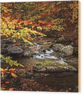 Autumn Stream Square Wood Print