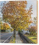 Autumn Stroll In Mystic Wood Print