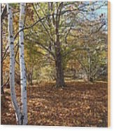 Autumn Stroll  Wood Print by Kimberly Maiden