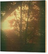 Autumn Sunsets Wood Print