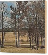 Autumn Texas Pasture Wood Print