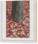 Autumn Tree Poster Wood Print