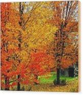 Autumn Trees By Barn Wood Print