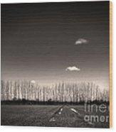 Autumn Trees Wood Print by Stelios Kleanthous