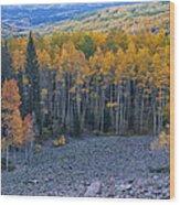 Autumn Valley Wood Print