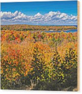 Autumn Vistas Of Nicolet Bay Wood Print