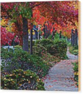 Autumn Walk In Grants Pass Wood Print