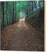 Autumn Walks Wood Print