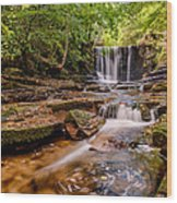 Autumn Waterfall Wood Print by Adrian Evans