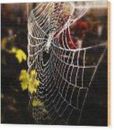 Autumn Web Wood Print