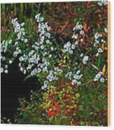 Autumn Wildflowers Wood Print