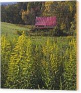 Autumn Wildflowers Wood Print by Debra and Dave Vanderlaan