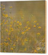 Autumn Wildflowers  Wood Print