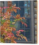 Autumn Window Wood Print