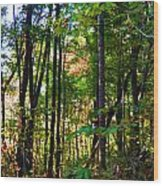 Autumn Wood Wood Print