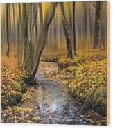 Autumn Woodland Wood Print by Ian Hufton