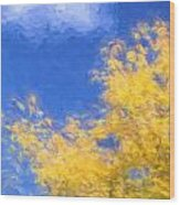 Autumn Xiv Wood Print
