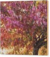 Autumn Xvii Wood Print