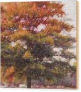 Autumn Xviii Wood Print