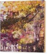Autumn Xxxxii Wood Print
