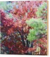 Autumn Xxxxiv Wood Print