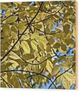 Autumn Yellow Wood Print