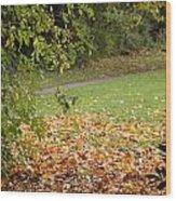 Autumnal 1 Wood Print