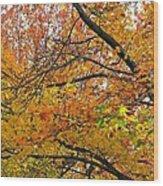 Autumnal Bliss Wood Print