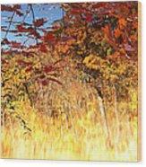 Autumnal Fire Wood Print by James Hammen
