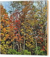 Autumnal Foliage Wood Print