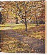 Autumnal Park Wood Print