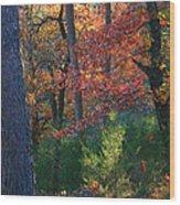 Autumnal Rock Wood Print