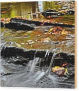 Autumnal Serenity Wood Print