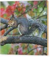 Autumnal Squirrel Wood Print