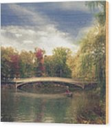 Autumn's Afternoon In Central Park Wood Print