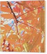Autumn's Array 24 Wood Print