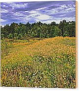 Autumns Brilliance Hdr Wood Print