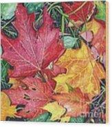 Autumn's Carpet Wood Print